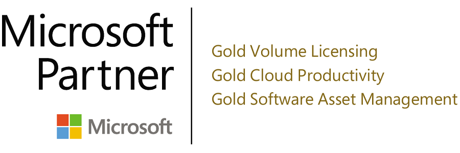 Gold Microsoft Partner Competencies Logo